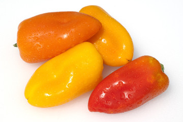 Paprika; Capsicum; annuum;