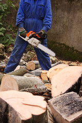 Chainsaw and some wood