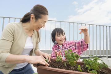 ベランダの植物の手入れをする祖母と孫
