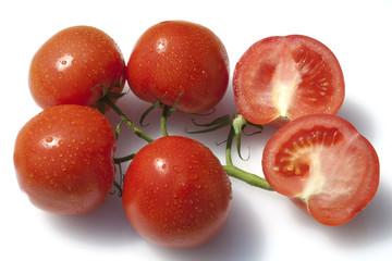 Rispen-Tomaten, Lycopersicon esculentum