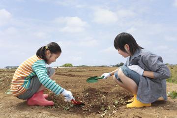 スコップで畑の土をいじる男の子と女の子