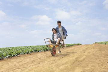 一輪車に息子を乗せて畑を走る父