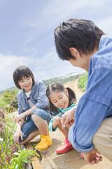 畑の野菜の前にしゃがむ父と子供2人