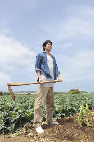 鍬を持って畑の中に立つ男性