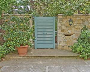 contemporary house green door and flowerpot, Athens Greece
