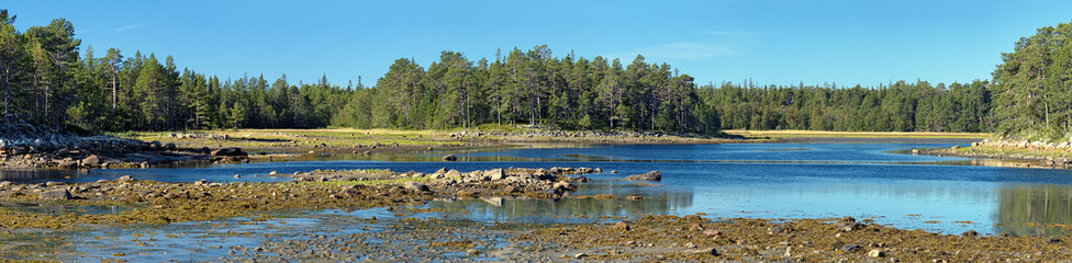 Panorama of White Sea coast during the low tide, Solovki
