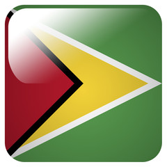 Glossy icon with flag of Guyana