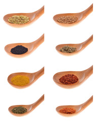 Collection  spices on a wooden spoon. isolated