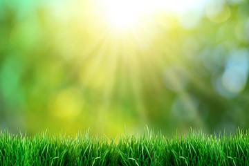 Green grass with sunset views.
