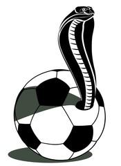 soccer football and snake