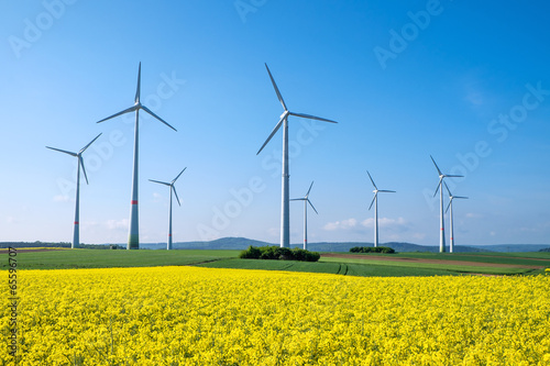 canvas print picture Rapeseed and windwheels