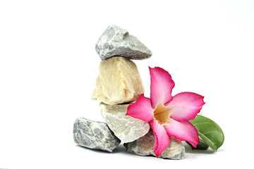 stones and pink flower on the white background