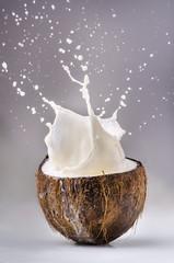 noce di cocco con latte splash