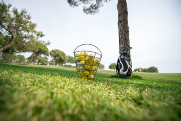 golf topu kovası