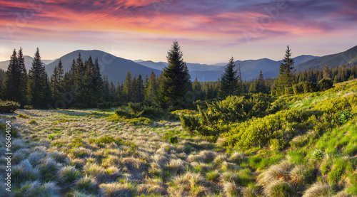 Colorful morning panorama of the Carpathian mountains.