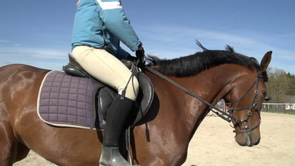 A lady in blue jacket doing a horse riding
