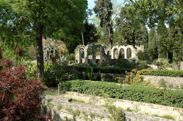 jardin des plantes 2