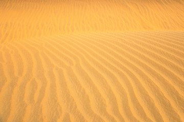 Sand Dune pattern background