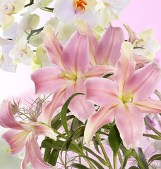 Lily.Flower card