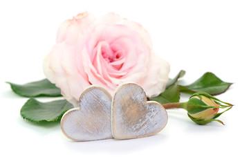 Rose, Herzen