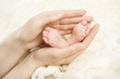 Newborn baby feet in mother hands. New born and parent