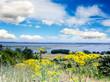 Insel Hiddensee bei Rügen :)