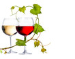 Two glasses of red and white wine decorated with grape leaves