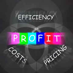 Profit Displays Efficiency in Costs and Pricing