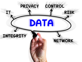 Data Diagram Displays Information Privacy And Integrity