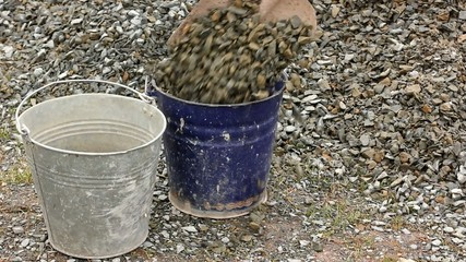 filling buckets with broken stone