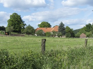 Ländliche Idylle mit grüner Wiese in Währentrup bei Detmold
