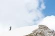 Skiier reaching mountain top