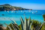 Fototapety Cala Tarida in Ibiza beach San Jose at Balearic Islands