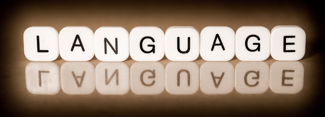 Language concept