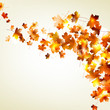 Autumn falling leaves background. EPS 10