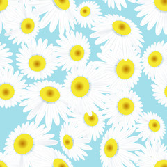 Seamless daisies pattern. EPS 10