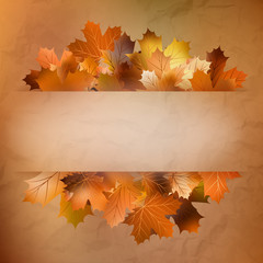 Autumn card of colored leafs. EPS 10