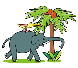 Elephant and bird