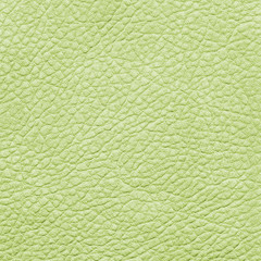 pale green leather texture.