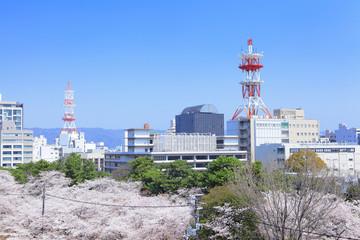 Wakayama cityscape