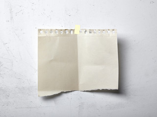 Ragged blank paper on white wall