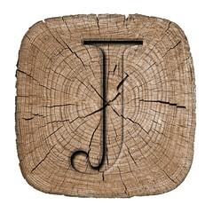 Wooden alphabet block, letter J