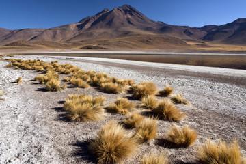 Laguna Miscanti - Atacama Desert - Chile