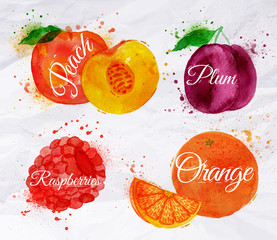 Fruit watercolor peach, raspberry, plum, orange