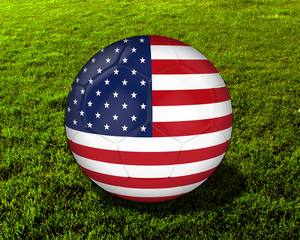 3d America Soccer Ball with Green Background - isolated