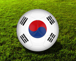 3d South Korea Soccer Ball with Grass Background - isolated