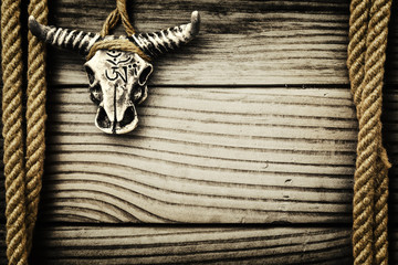 Buffalo skull on wooden background