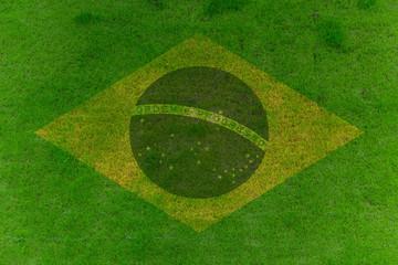 Rasen mit Brasilienflagge