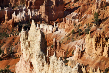 Stunning landscape of Bryce Canyon