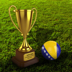3d Bosnia Soccer Cup and Ball with Grass Background - isolated